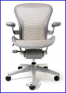 Aeron Chair by Herman Miller Basic Titanium Frame Quartz Wave Size C