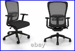 Fully Adjustable Zody Office Chair by Haworth Made in USA (Renewed)