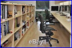 Herman Miller Classic Aeron Chair PostureFit Support Kit Graphite Size B