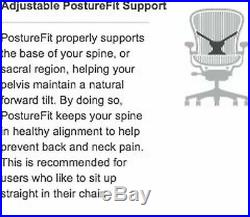 Herman Miller Classic Aeron Office Chair PostureFit Support Kit in Graphite